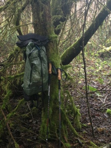 Thank you to the tree for a perfect spot to hang my backpack!
