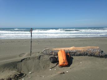 Finding a nice drift log on the beach always makes for a nice spot to stop for lunch!
